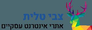 צבי טלית – מומחה וורדפרס Logo